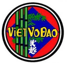 VietVoDao-logo
